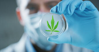 All legal cannabis products sold in Massachusetts are held to strict testing requirements.