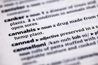 Some cannabis terms also have other meanings in everyday life, like crystals, cola, or reclaim, making it even more confusing