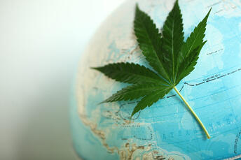 Cannabis has been used throughout history, both medicinally and recreationally.